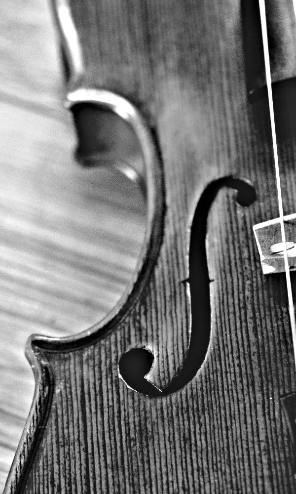 Spirit of Doolin - Irish Traditional Music - Fiddle